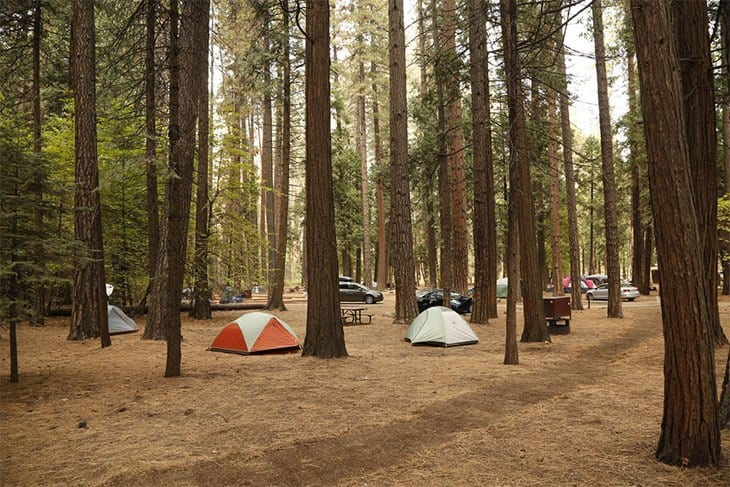 North Pines Camping Grounds​ - Yosemite National Park