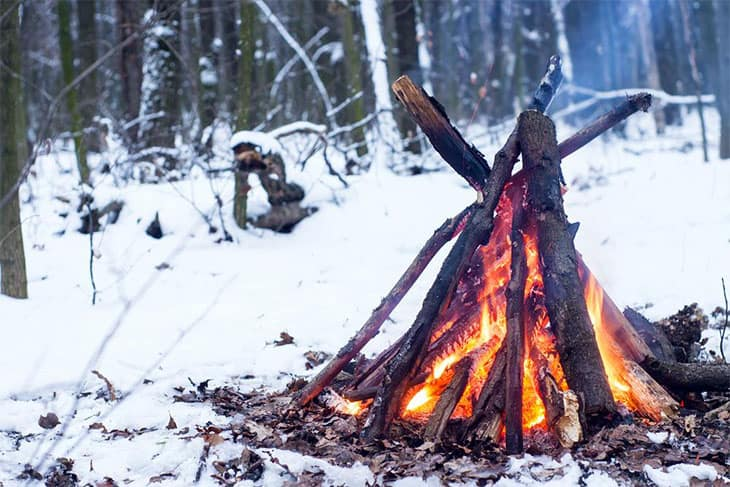 Building Fire From Wet Wood: A Step-by-Step Guide