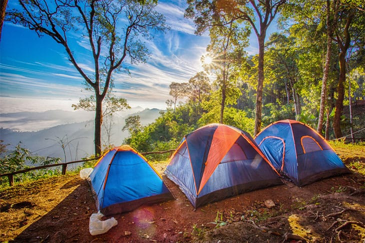 Things To Consider​ when choosing the best 6 person tent
