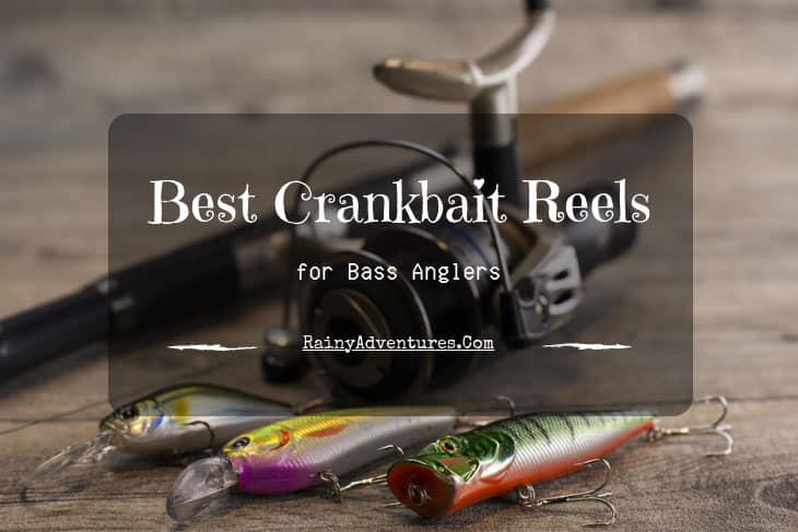 Best Crankbait Reel | 2019 Reviews | Do NOT Buy Before