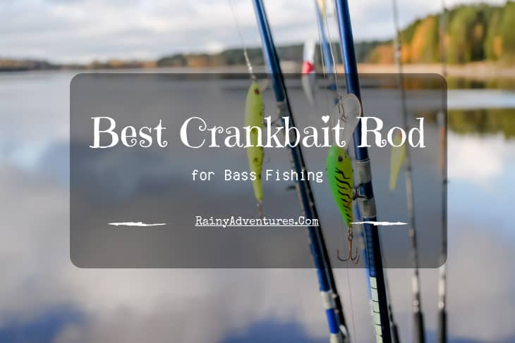 Best Crankbait Rod