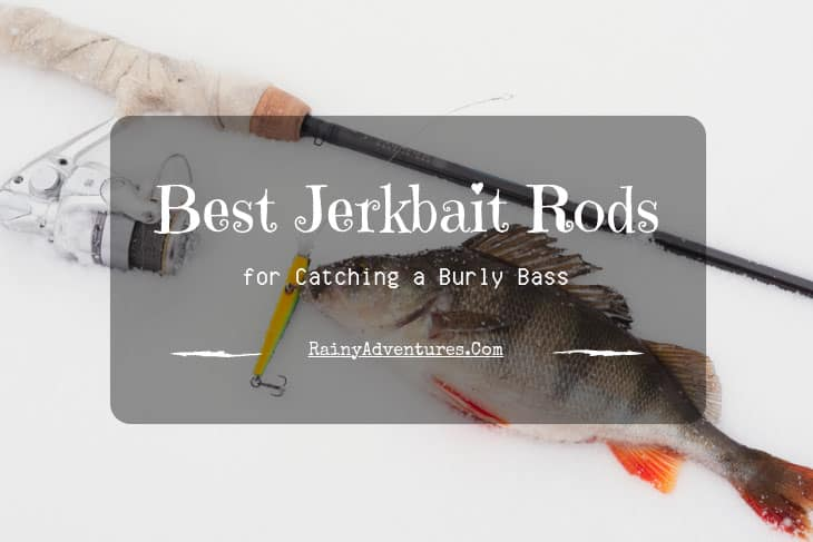 Best Jerkbait Rod