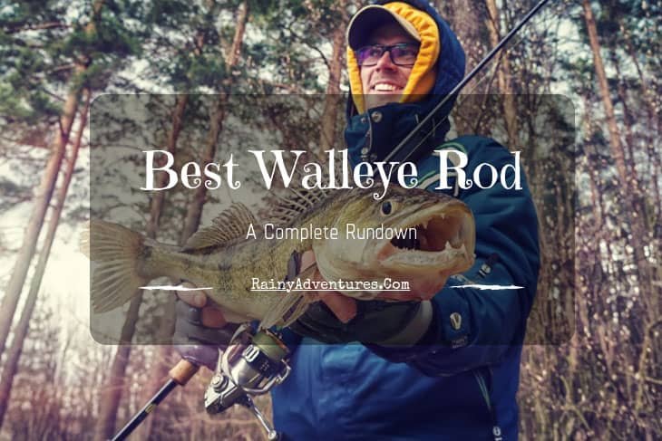 best walleye rod