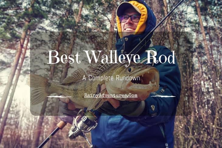 best walleye rod