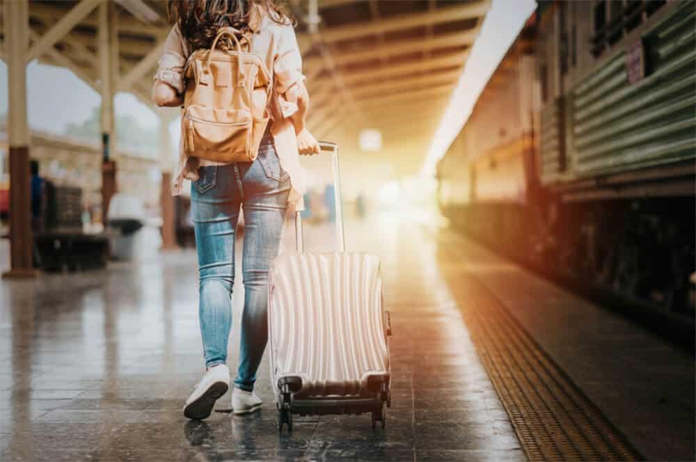 Best Skyway Luggage
